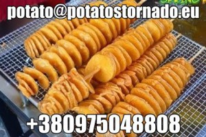 528-potato-chips-potato-twist-potato-spiral (1)